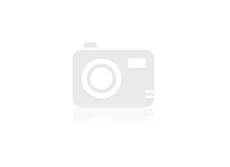 DESKA TARASOWA  ŚWIERK 146x28mm OLEJOWANIE NA WYBRANY KOLOR