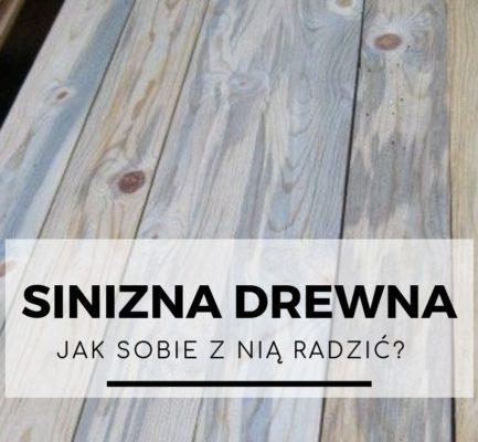 Sinizna drewna – jak sobie z nią radzić